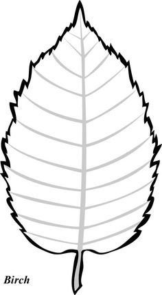 Aspen leaf pattern. Use the printable outline for crafts