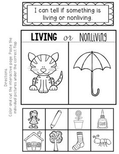 Here's a cut and paste sort on living and nonliving things