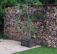 Yellow Twig Dogwood Cornus Sericea 'Flaviramea' Paired With