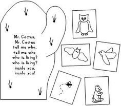 1000+ images about Cactus for kindergarten on Pinterest