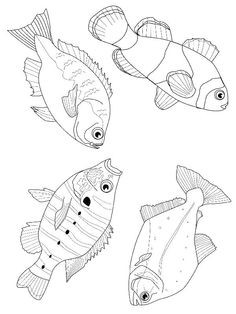 1000+ images about Marine life coloring pages on Pinterest