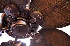 1000 images about Tropical Ceiling Fans on Pinterest