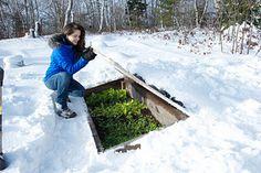 Garden Design Garden Design With Winter Gardening Tips Survival