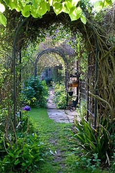 Pin By Rose Jackson On In My Dreams Pinterest Gardens