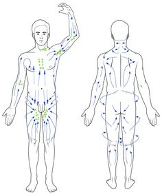 Lymphatic massage can help to unblock the lymph system by