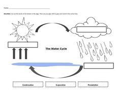 Four water cycle vocabulary cards (evaporation