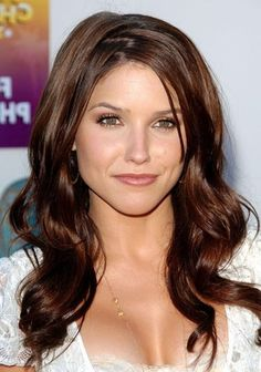 Long Brown Hair With Highlights