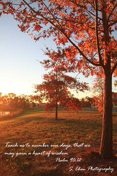 Fall Farm Desktop Wallpaper 1000 Images About Autumn Bible Verses On Pinterest