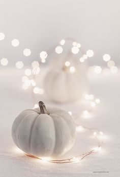 white pumpkin & twin
