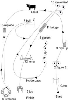 1000+ images about Working Equitation on Pinterest