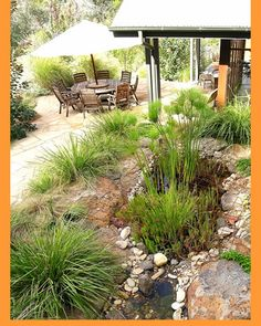 Photo Of A Australian Native Garden Design From A Real Australian