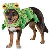 Top Paw Pet Halloween Hamburger Costume | Costumes ...