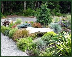 Pacific Northwest Landscaping Ideas Google Search The Great