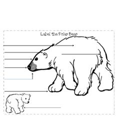 Label He Diagram Worksheet, Label, Free Engine Image For