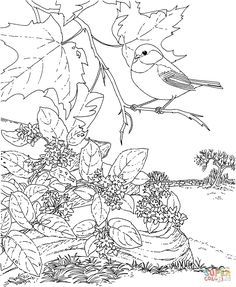 Coloring, Free printable coloring pages and Flower stands