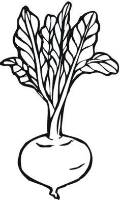 Kidney Beans coloring page Faa