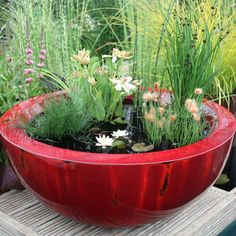 Make Your Own Mini Pond Perfect For Small Patios And Apartment