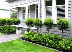 New Zealand Villa Fences Google Search Garden Design