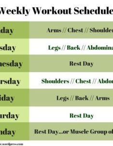 Muscle workout schedule photos also strengthening rh musclestrengtheningzumotetsuspot