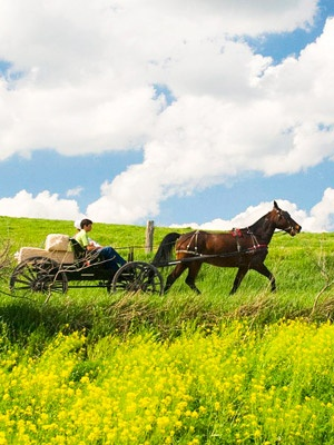 Guide to Ohio's Amish Country – Amish shops & restaurants revealed.