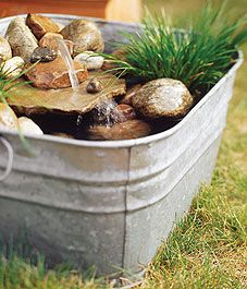potted ponds: mini water garden