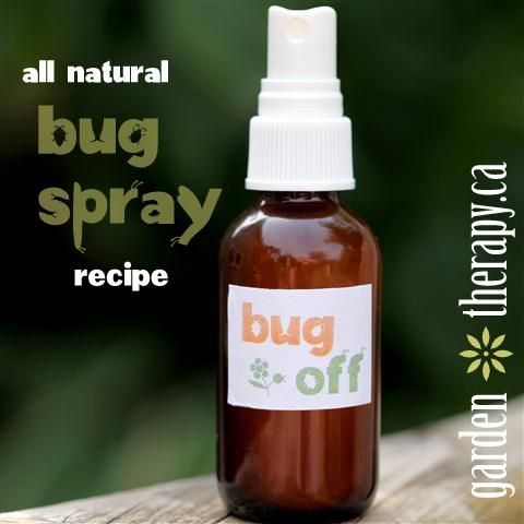 Bug Spray  Ingredients  4 drops citronella essential oil  4 drops lemongrass ess