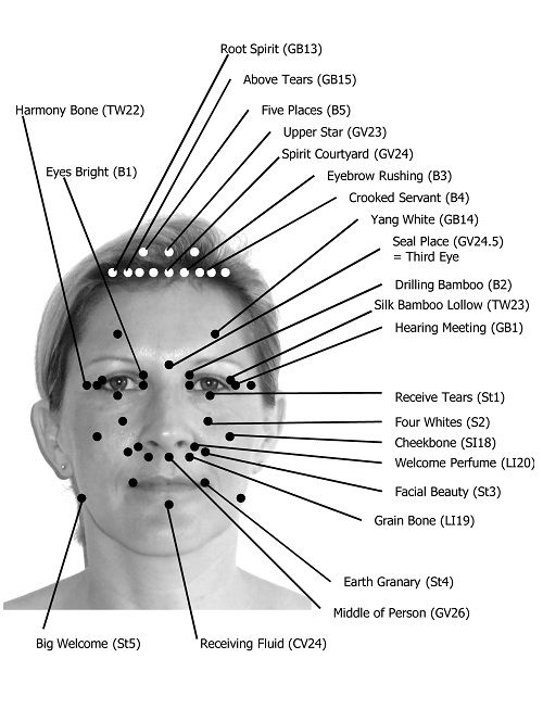 facial acupressure points The face and the skull are linked to all the organs in