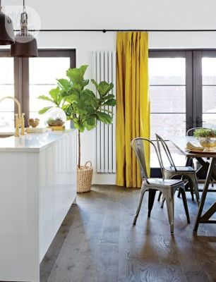 Style at Home California Cool Kitchen...Fiddle Fig Tree and Silk Yellow Drapes: