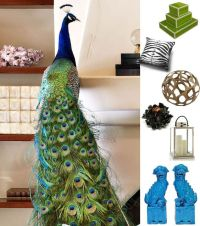 Peacocks, Living rooms and Decorating ideas on Pinterest