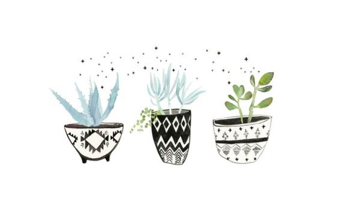 Plants Summer Desktop wallpaper - Fond d'écran ordinateur été