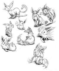 Coloriage A Imprimer Pokemon Famille Evoli.Coloriage Pokemon Famille Evoli Coloriage Pokemon Mentali