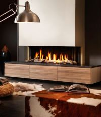 Fireplaces Trends - Dru Gas Fireplace PowerVent in a ...