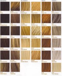 Hair Color Ideas - Finding the Best Hair Color For You ...
