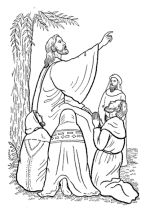 Bible coloring pages, Coloring pages and New testament on