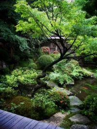 Gardens, Beautiful and Backyard ponds on Pinterest