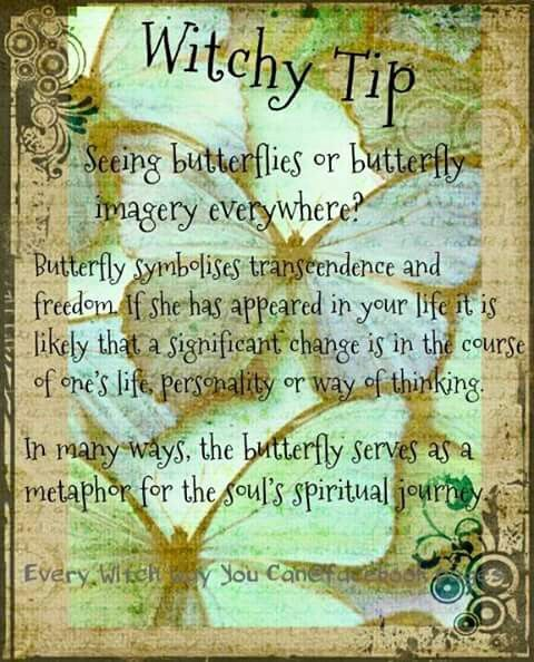 Magickal Tip for Saturday: Butterflies……Magickal Tips ...