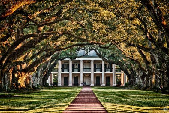 abandoned southern plantations for sale | Oak Plantation- an abandoned plantation in Louisiana... dream entrance:
