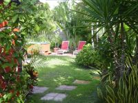 Landscaping, Tropical and Florida on Pinterest