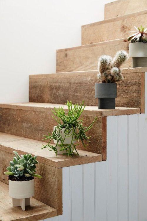 Decoração de cactos e plantinhas para escadas :}: