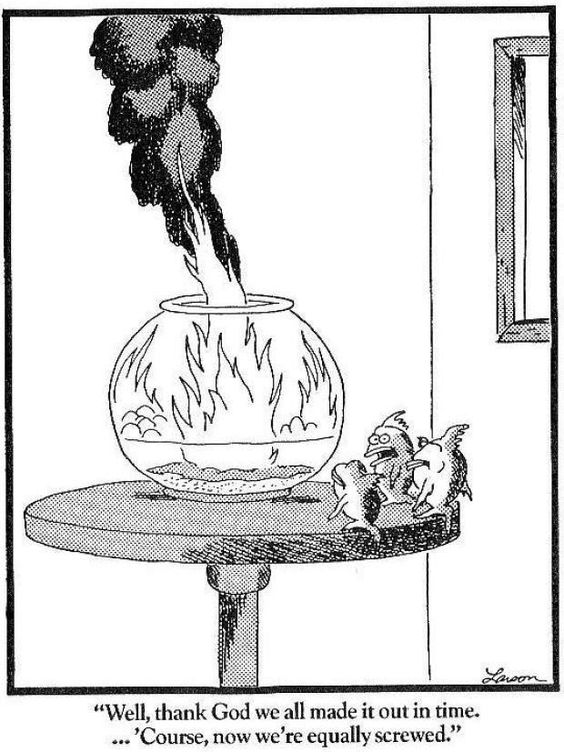 Far side comics and Comic on Pinterest