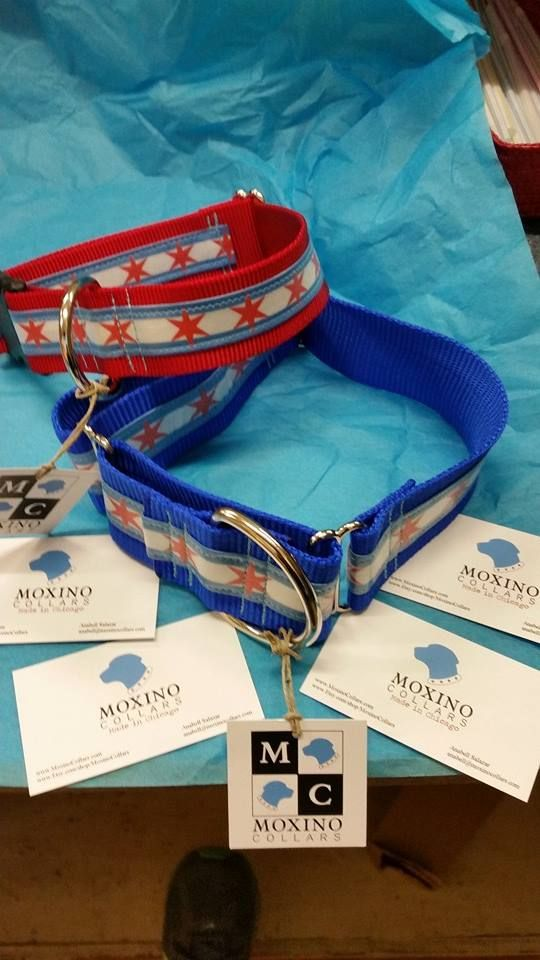 Chitown pup gear by Moxino