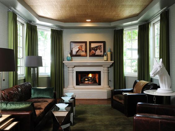 Jade, Traditional living rooms and Tray ceilings on Pinterest