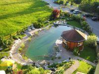 Swimming Pond | landscaping | Pinterest | Backyard ponds ...