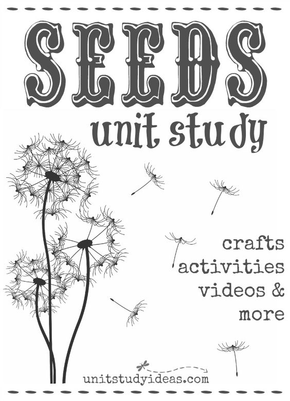 Unit studies, Study and Seeds on Pinterest