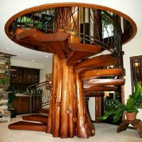 Spiral tree staircase in tree house. | Stairway to ...