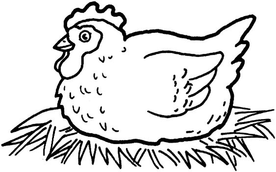 Coloring, Coloring pages and Chicken pictures on Pinterest