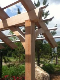 Pergola with shed style pitched roof. - finally found out ...