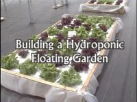 A step-by-step tutorial on building a floating hydroponic ...