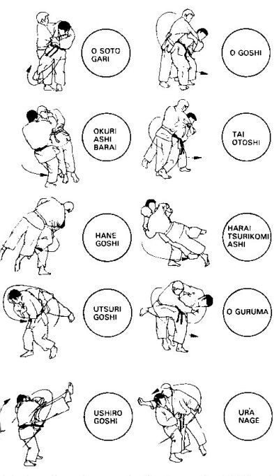 Aikido took basic Judo techniques and incorporated them