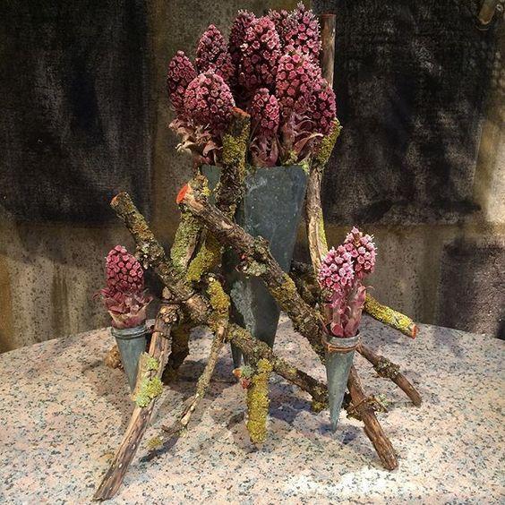 Unique compositon - zinc cones held by eldertree branches -  today arranged with butterburs - a herald of spring in Denmark. #tageandersen #copenhagen #spring #artistic #petasites #forårsbebuder #nature: